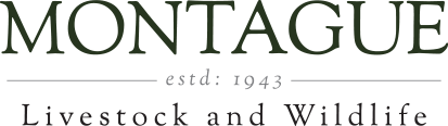 Montague Farm logo
